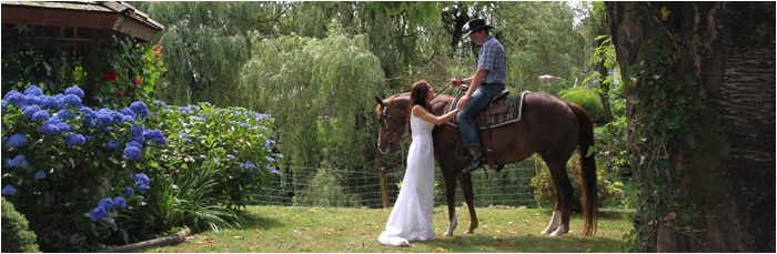 bride-groom-horse-wedding