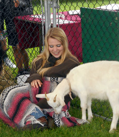 petting-zoo-at-fall-festival